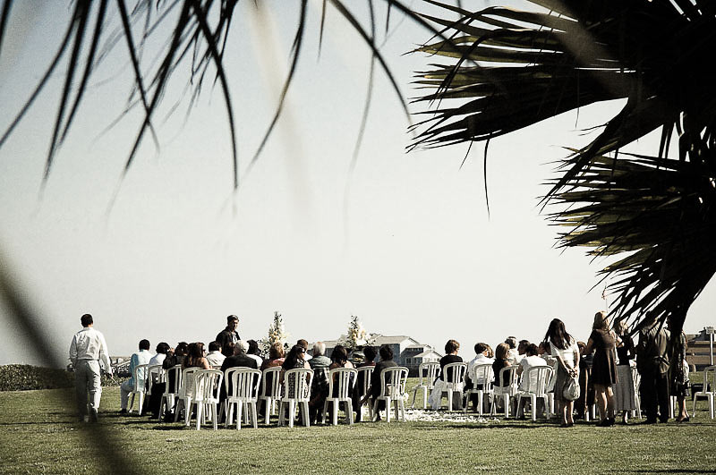 Wedding Ceremony, looking through Palm Trees, Santa Barbara