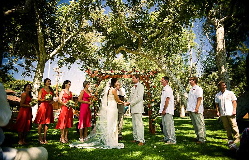 A colorful Wedding Ceremony under green Sycamore tree and blue sky
