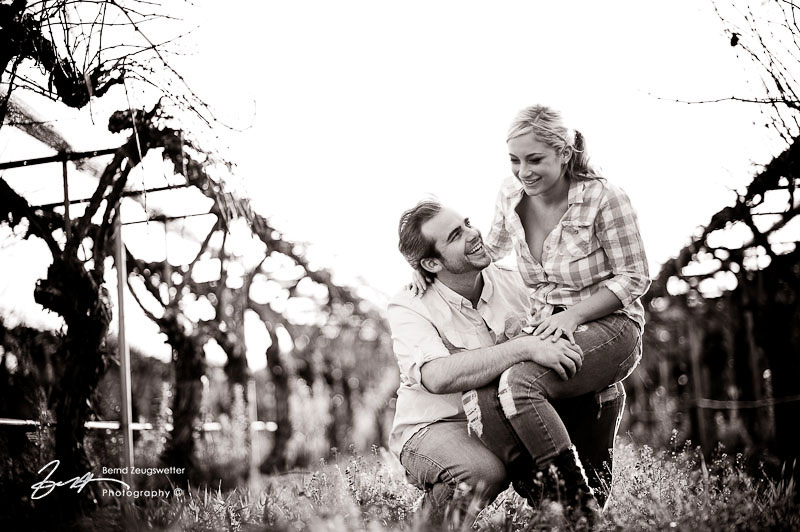 Engagement Pictures at Firestone Vineyard, Santa Ynez.