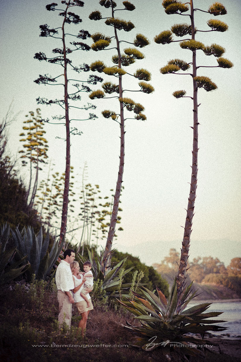 Portrait of family at Coal Oil Point with century plants, Santa Barbara
