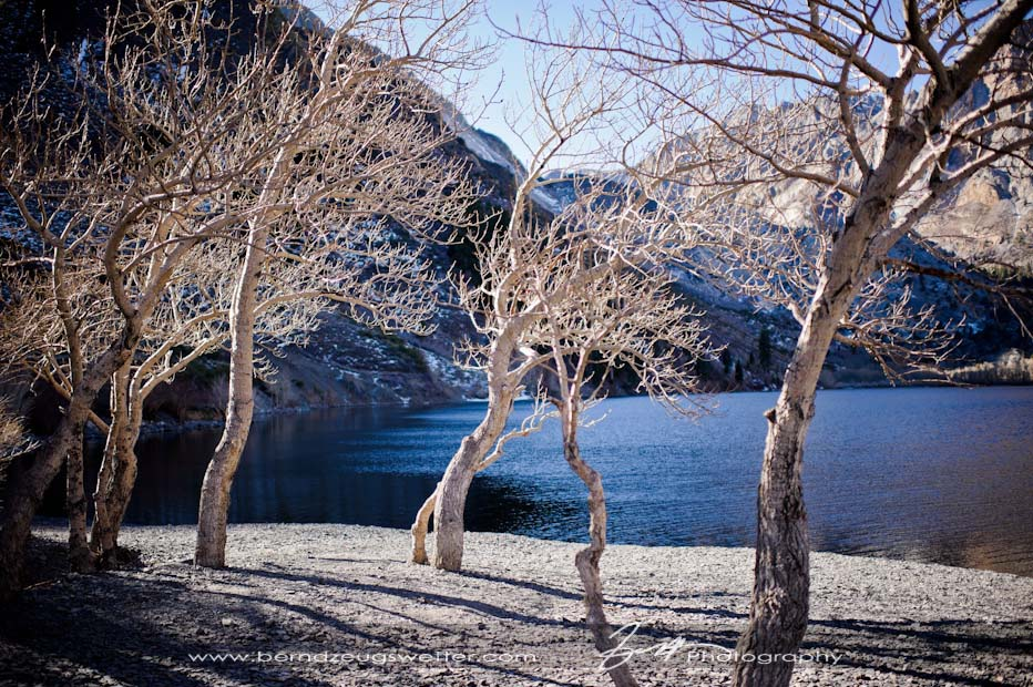 Convict Lake, Eastern Sierra wedding photography.