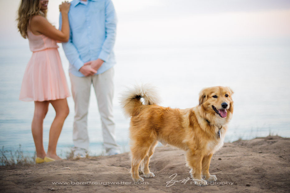 Engagement session with dog in Santa Barbara