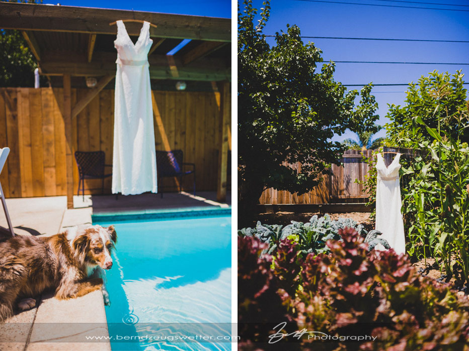 Wedding gown photos over pool and in garden.