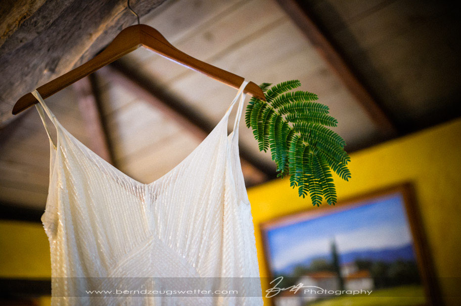 Wedding gown, Sonoma wedding photography.