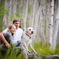 couple and dog sitting in aspen trees.